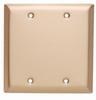 Blank Plates -- Box Mounted, Two Gang, Brushed Bronze -- SB23BZ - Image