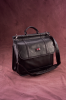 Deluxe Projector/Laptop Padded Carry Case -- GAV-DLX-20