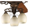 Meeting Street Collection Ceiling Fan Light Kit -- P2640-102