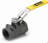 Carbon Steel Ball Valves Series 502CS -- Locking Handle, Female Pipe Ends, Panel Mount XVP502CS