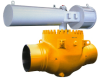GROVE® Top Entry Valve -- BT-1 Series
