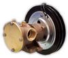 50580 Bronze Pedestal Pump -- 50580-9201