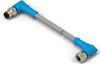 M8/M12 Cable Assemblies -- T4062224004-005 -Image
