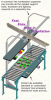 Conveyor Roller Workstation with PBT Ball Transfer and PPD Positioner Strip - Image
