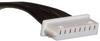 Rectangular Cable Assemblies -- WM15272-ND -Image