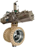 Eccentric Soft Seated High Capacity Butterfly Valves -- BN Series - Image