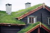Pitched Turf/Sedum Roofs