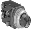 30 mm Pilot Light 800T PB -- 800T-PCL416AAGG -- View Larger Image