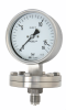 Diaphragm Pressure Gauge In Chemical Version -- DPC100 - Image