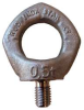 Hoist Ring,Swivel Eyebolt,Sz M16-2 -- 7993836