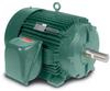 Inverter/Vector AC Motors -- IDVSM3661T