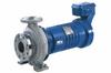 Horizontal, Seal-less Volute Casing Pump -- Secochem Ex - Image
