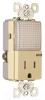Combination Switch/Receptacle -- TM8-HWLTRICC6 -- View Larger Image