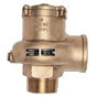 APOLLO® Vacuum Relief Valve -- 37-202