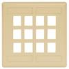 Datacommunication Face Plate -- IFP212TI - Image
