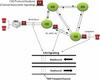 Channel Associated Signaling Analyzer -- XX092