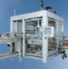 Case Packing Machine -- CCM 3100 - Image