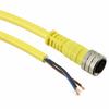 Circular Cable Assemblies -- WM12987-ND -Image