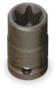Torx Socket,External,1/2Dr,E20,Chrome -- 1FL06 - Image