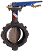 Butterfly Valve - Ductile Iron, Wafer Type, 100 PSI, Actuated, Stainless Steel -- WD-L022 - Image