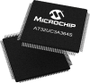 Microcontrollers, mTouch -- AT32UC3A364S