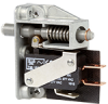 Specialty Basic Switches -- 423AC2-E9