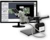 Microscope, Stereo Zoom (Binocular) -- 243-26800B-373-9-ND -Image