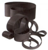 Neoprene Timing Belts -- Molded Endless - Image