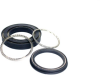 Spring Energized Seals -- View Larger Image