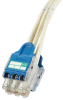 QuickNet Switch Harnesses : Category 6 UTP -- QPPCLWAB3M