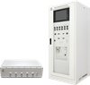 Gas Analyzer/Laser Raman -- LRGA-6000