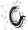 1000 Series Cylindrical Roller Bearings -- NU1005 - Image
