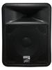 PR 12D Speaker Enclosure -- PR 12D
