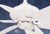 41U11D Fans-Ceiling Fans -- 779851