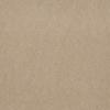 Windswept ClassicBac® Carpet -- I0200