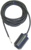 High (25) Amp Float Switch -- L Series - Image