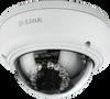 Vigilance Full HD Outdoor Dome Network Camera -- DCS-4602EV