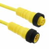 Circular Cable Assemblies -- LR05KR109YL355-ND -Image