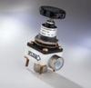 Manually Set Pressure Regulators -- SV100 Series -- View Larger Image