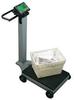 Portable Digital Utility Scale -- H147152 -Image