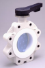 Butterfly Valve Type 365 w/Lever and Gear Operator - Image