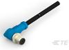 M8/M12 Cable Assemblies -- T4161210004-001 -Image