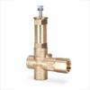 Industrial Duty Pressure Relief Valve -- 7590.1