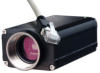 Ethernet CCD Video Camera -- DEWE-CAM-GIG-E-50