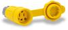 15A Electrical Connector w/cap: watertight, straight blade, NEMA 5-15 -- 15W47BRY