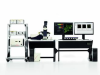 Single Molecule Detection Platform -- Leica TCS SP8 SMD-Image