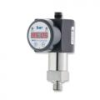 DS200 Combined Hydrostatic Level Switch, Gauge and Sensor -- DS200 Combined Hydrostatic Level Switch, Gauge and Sensor