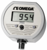 Digital Pressure Gauge NEMA-4 Rated -- DPG1100 Series