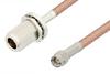 SMA Male to N Female Bulkhead Cable 12 Inch Length Using PE-P195 Coax, RoHS -- PE34178LF-12 -Image