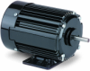 42R Series AC Induction Motor -- Model 258